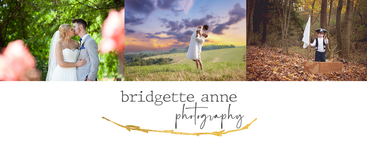 Bridgette Anne Photography